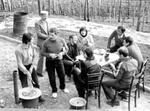 Piknik pri Branetu